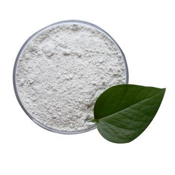 100% Organic Fertilizer Manure Supplier India